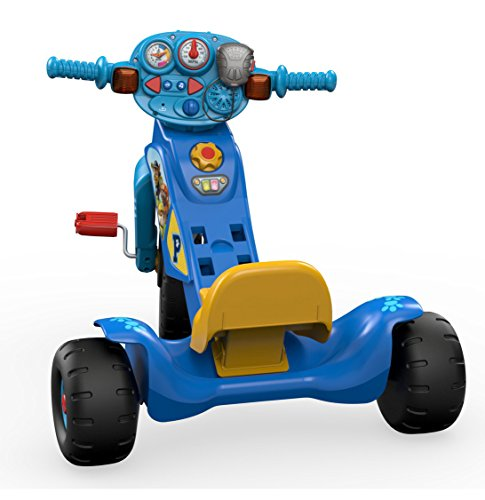 Fisher Price Nickelodeon Paw Patrol Lights Amp Sounds Trike